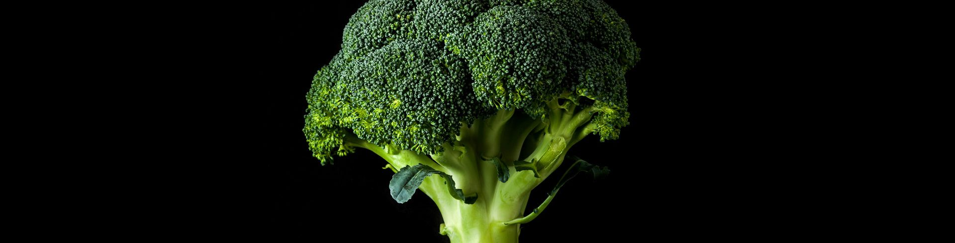 Photograph of Broccoli
